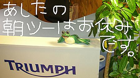 kaeru_01.jpg